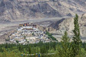 Mobile internet services restored in Ladakh's Kargil after 145 days post revocation of Art 370