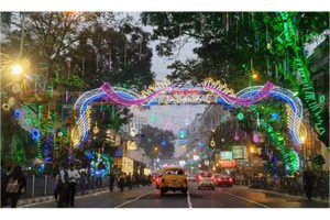 Festivity in the air: Park Street decked up, revelers soak in Christmas mood