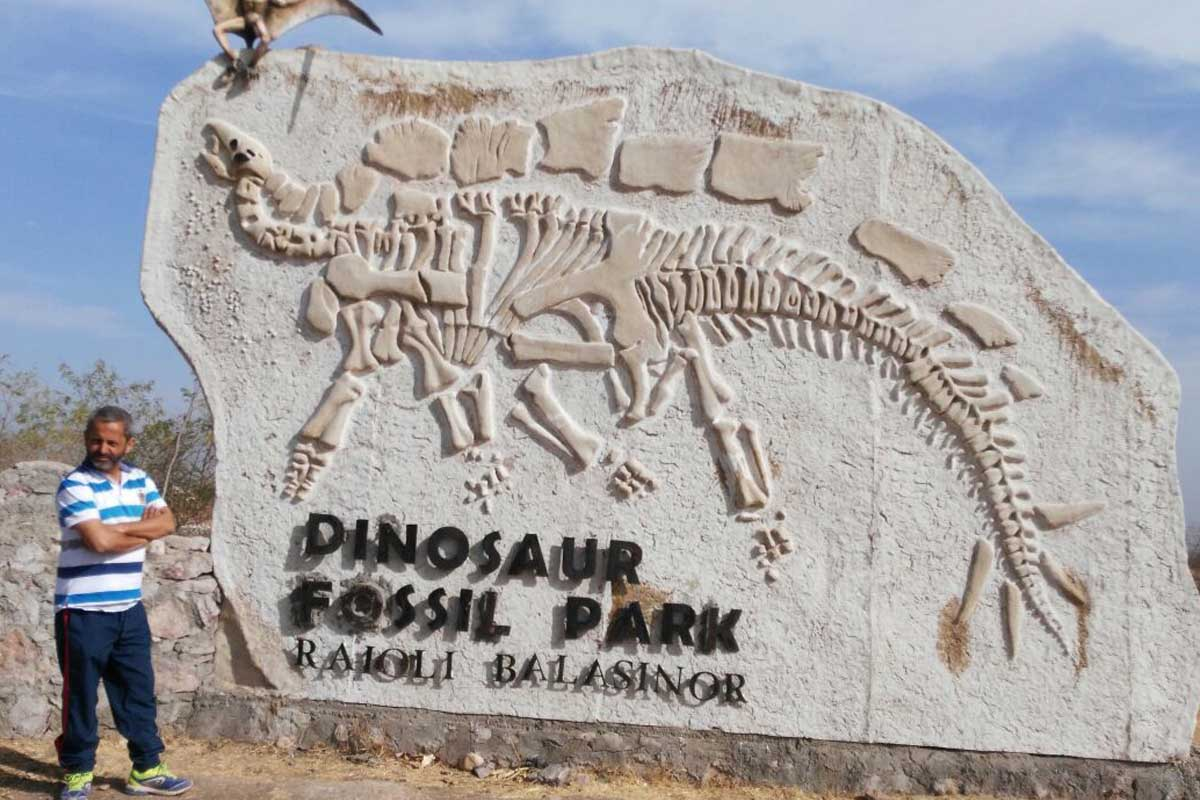 HP geologist proposes new theory on Dinosaur extinction in India
