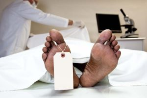 Multiple NRC-phobia deaths make admin sit up and take notice
