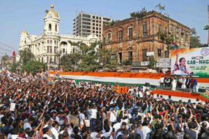 Trinamul remembers Singur movement martyrs