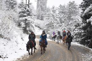 Shimla witnesses season's first snowfall