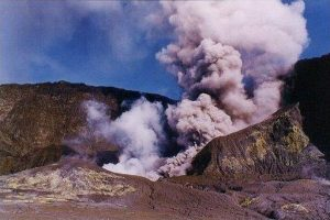 New Zealand to import skin to treat volcanic eruption survivors