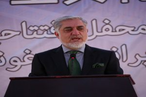 Afghan CEO approves vote recount in contested provinces
