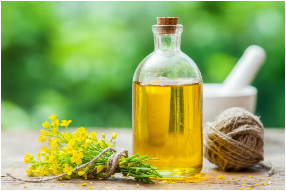 Canola oil may negatively impact your health