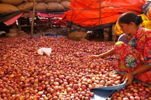 Onions in Delhi expected to witness dip in price after arrivals from overseas