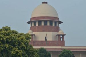 SC gives nod to felling of 452 trees for construction of additional rail track on Delhi-Agra line