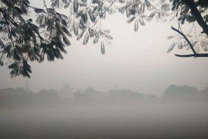 Biting cold persist in Punjab, Haryana; Bathinda coldest at 5.6 degrees