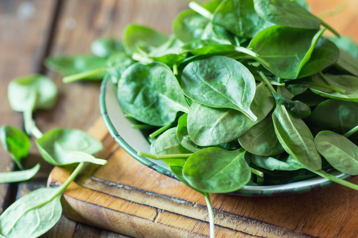 Spinach, Spinach health benefits, vegetable benefits, benefits of spinach, benefits of green leafy vegetables, Vitamin E,