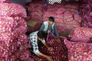 India's wholesale inflation hits 2.59% in December