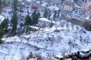 Heavy snowfall brings cheers for apple growers in HP