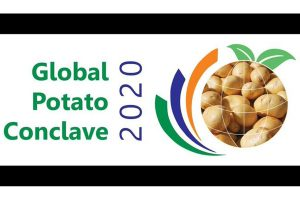 PM to open potato conclave in Gujarat on Tuesday