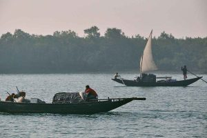 A way to protect the Sunderbans