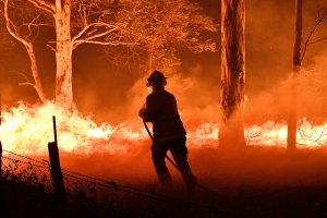 Australia, New Zealand players to pay tribute to personnel fighting bushfires