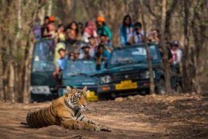 Economic slowdown hits Bengal Safari footfall