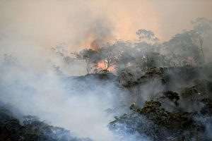 Australia bushfires: Thousands race to beaches for safety as death toll climbs to 21