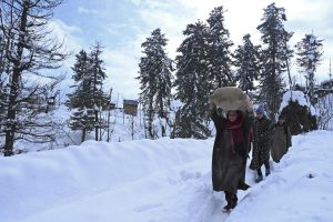 Jammu and Kashmir Lt Governor seeks report on commodities after heavy snowfall