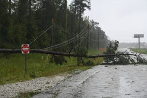 11 killed in US storms