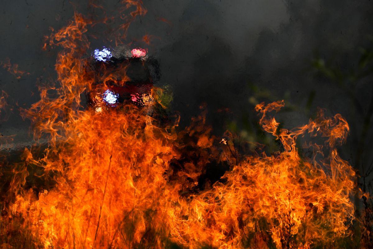Vast majority of Australians affected by bushfires: Poll