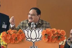 'Will you burn Delhi to defeat Modi, Shah?' JP Nadda questions Kejriwal over Shaheen Bagh firing