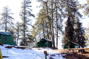 Environment offences rise by 72 per cent in Himachal