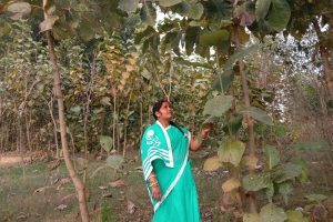 Woman transforms barren hilly terrain into a 'green zone'