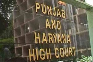 Punjab and Haryana Court gives consent to open essential item shops amid lockdown