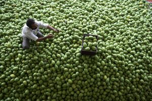 COVID-19 hits demand, pushes March wholesale price inflation to 1%