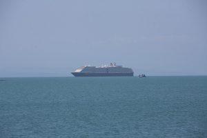 Australia launches criminal probe into cruise ship disembarkation