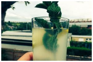 Stay cool with chilled minty summer beverage – Lemon-Mint Love