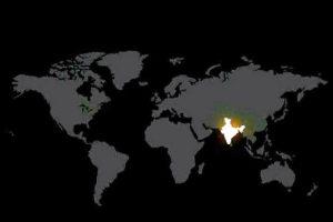 India all prepared to chase away Coronavirus darkness at 9 pm