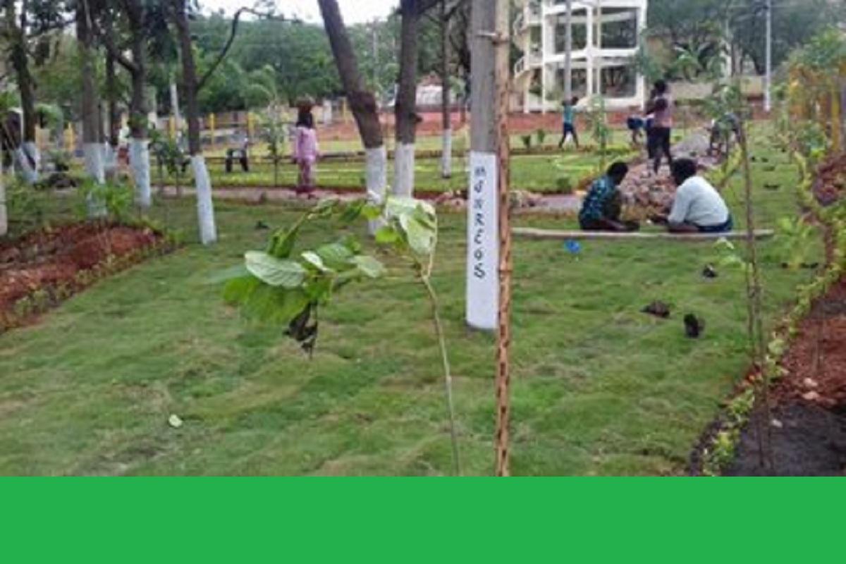 MGNREGS, COVID- 19, Bengal, Kolkata, West Bengal