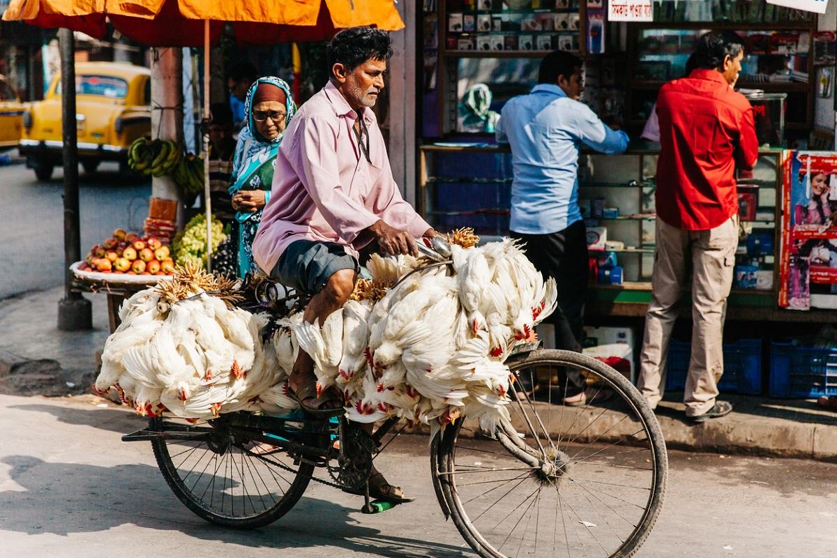 Chicken sellers, Kolkata, fish, lockdown, Kolkata, coronavirus, mutton, West Bengal