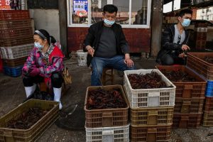 'We're doomed this year', China's wet markets struggle to survive amidst pandemic