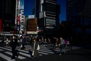 The Japan model