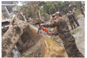 Trees in city roads will be cleared by Wednesday: Hakim