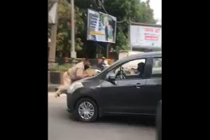 Punjab cop on lockdown duty tries to stop car in Jalandhar, dragged on bonnet; driver arrested