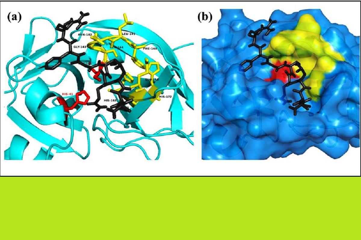 IIT Roorkee, COVID-19, SARS, CoV2, FDA
