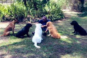 Ravi Shastri meets 'ICC regulations' in huddle with dogs