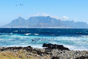 Your guide to a virtual South Africa tour