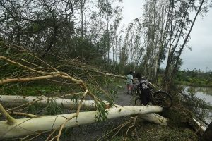 East Burdwan accrues an estimated crop damage of Rs 299 cr in cyclone Amphan
