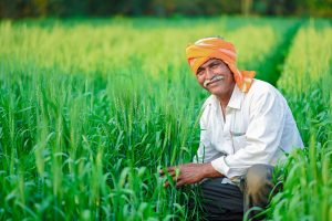 Government to launch mass awareness programme for farmers in over 1 lakh villages