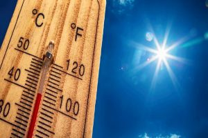 IMD issues 'red alert' for North India as heatwave intensifies, warns people to stay indoors between 1-5pm
