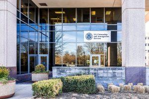 Donald Trump mulling suspension of H-1B visas amid massive unemployment in US: Report