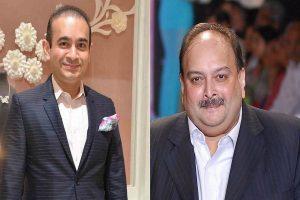 ED brings back jewellery worth Rs 1,350 Crore owned by Nirav Modi, Mehul Choksi firms