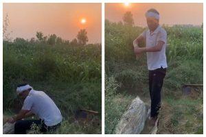 Watch | Nawazuddin Siddiqui turns farmer for a day, works in fields