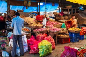 Scheme of special micro-credit facility 'PM SVANidhi' launched for street vendors