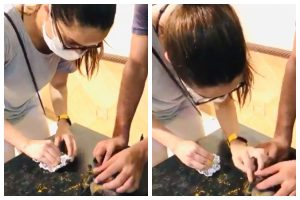 Watch | Shraddha Kapoor comes to the rescue of an injured crow
