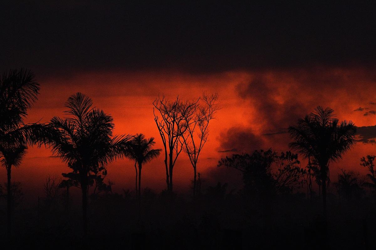 Brazil, Amazon fire