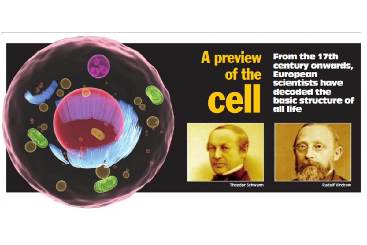 A preview of the cell - The Statesman